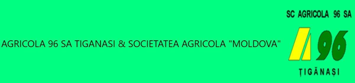 "Agricola 96 SA Tiganasi & Societatea Agricola ""Moldova"""